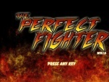 The Perfect Fighter Hacked